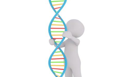 長い文章の切れ目の見つけ方 細胞単離方法