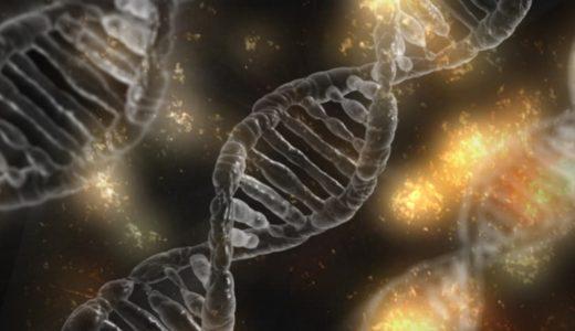 遺伝子編集CRISPR-Casシステムを理解するための最初の一歩